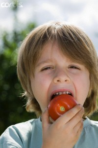 Boy Eating Tomato in Dr. Keefe, Keefe Clinic. Tulsa Chiropractor, pain, natural health care., Portrait